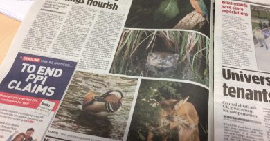 photo of an article about Figgate Park